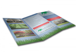 Digital Flyers & Brochures