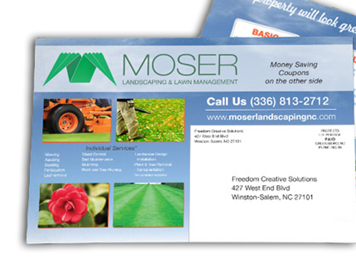 Moser premium gloss post cards