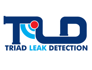 triad leak detection logo